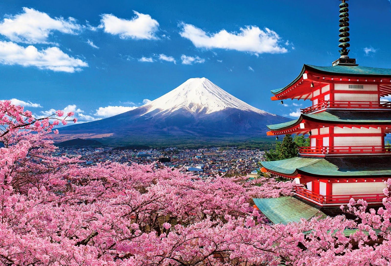 NGÀY 02 : TOKYO- FUJI     (ĂN SÁNG,TRƯA, TỐI)