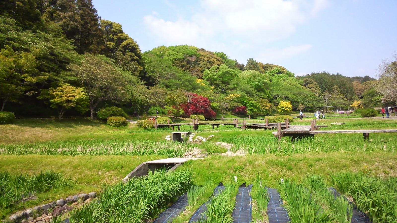NGÀY 03 : FUJI - HAMAMATSU - TOYOHASHI(ĂN SÁNG, TRƯA, TỐI)